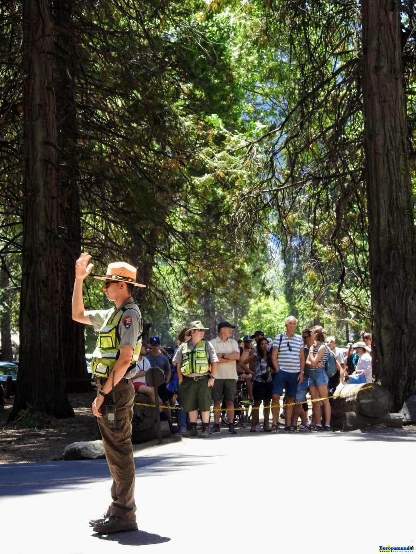Parque Nacional Yosemite.